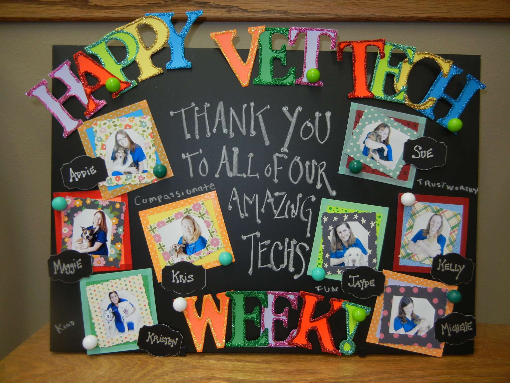 NATIONAL VET TECH WEEK!  THANKS TO OUR GREAT TECHS!