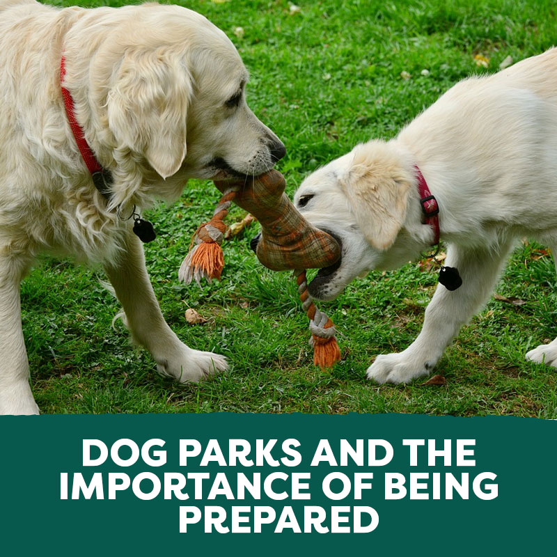 Dog Parks and the Importance of Being Prepared