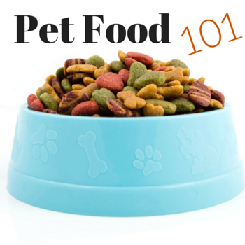 Important Considerations During Pet Nutrition Month
