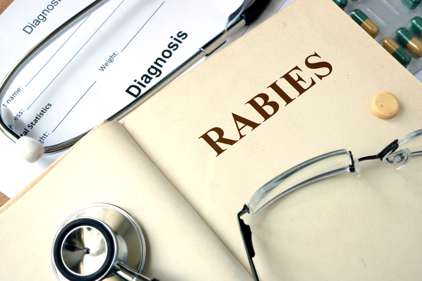 Rabies: What You Don't Know Can Hurt Your Pet